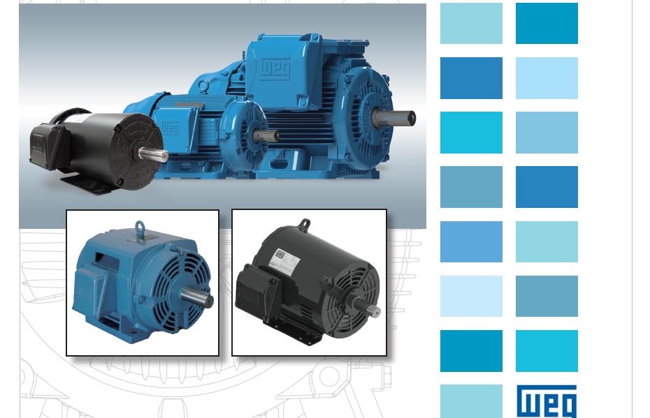 WEG 电机Motors