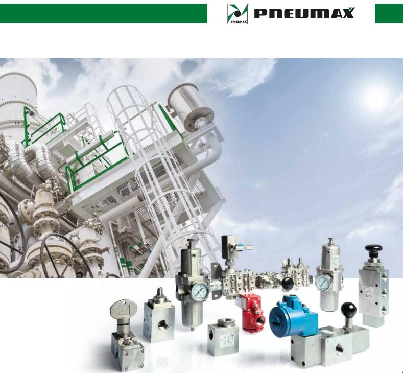 PNEUMAX  -过程自动化控制PROCESS AUTOMATION